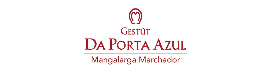 Mangalarga Marchador Gangpferde aus Brasilien